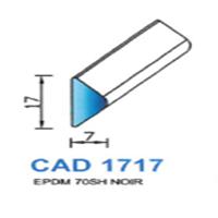 CAD1717N Profil EPDM   70 SH Noir