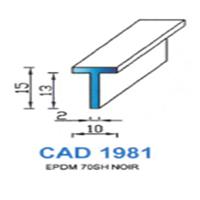 CAD1981N Profil EPDM   70 SH Noir
